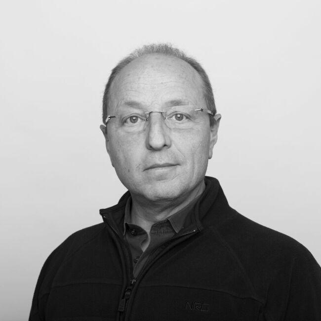 Daniele Stefanini